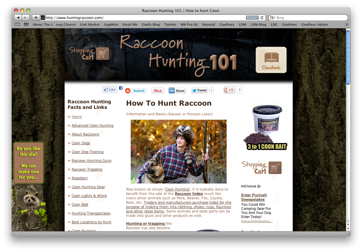 Raccoon Hunting How To Web Design